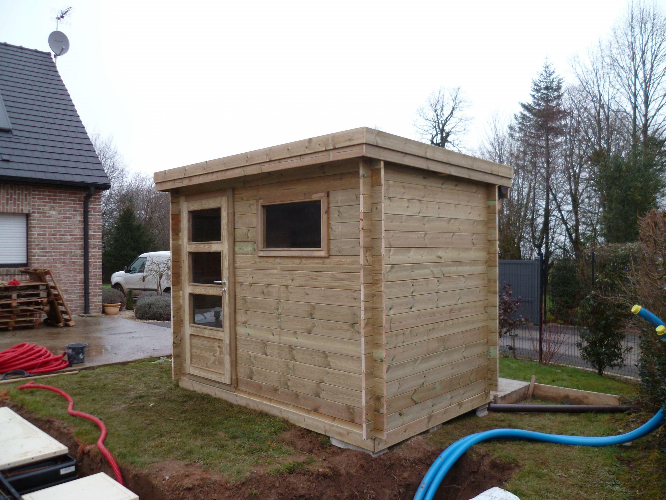 Abri jardin Contemporain en bois autoclave avec toiture en