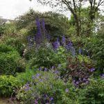 Aménager Un Jardin En Pente Aménager Un Petit Jardin Pour Donner Une Impression D