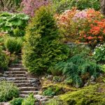 Aménager Un Jardin En Pente Un Jardin En Pente Agencer Et Aménager Un Jardin En Pente