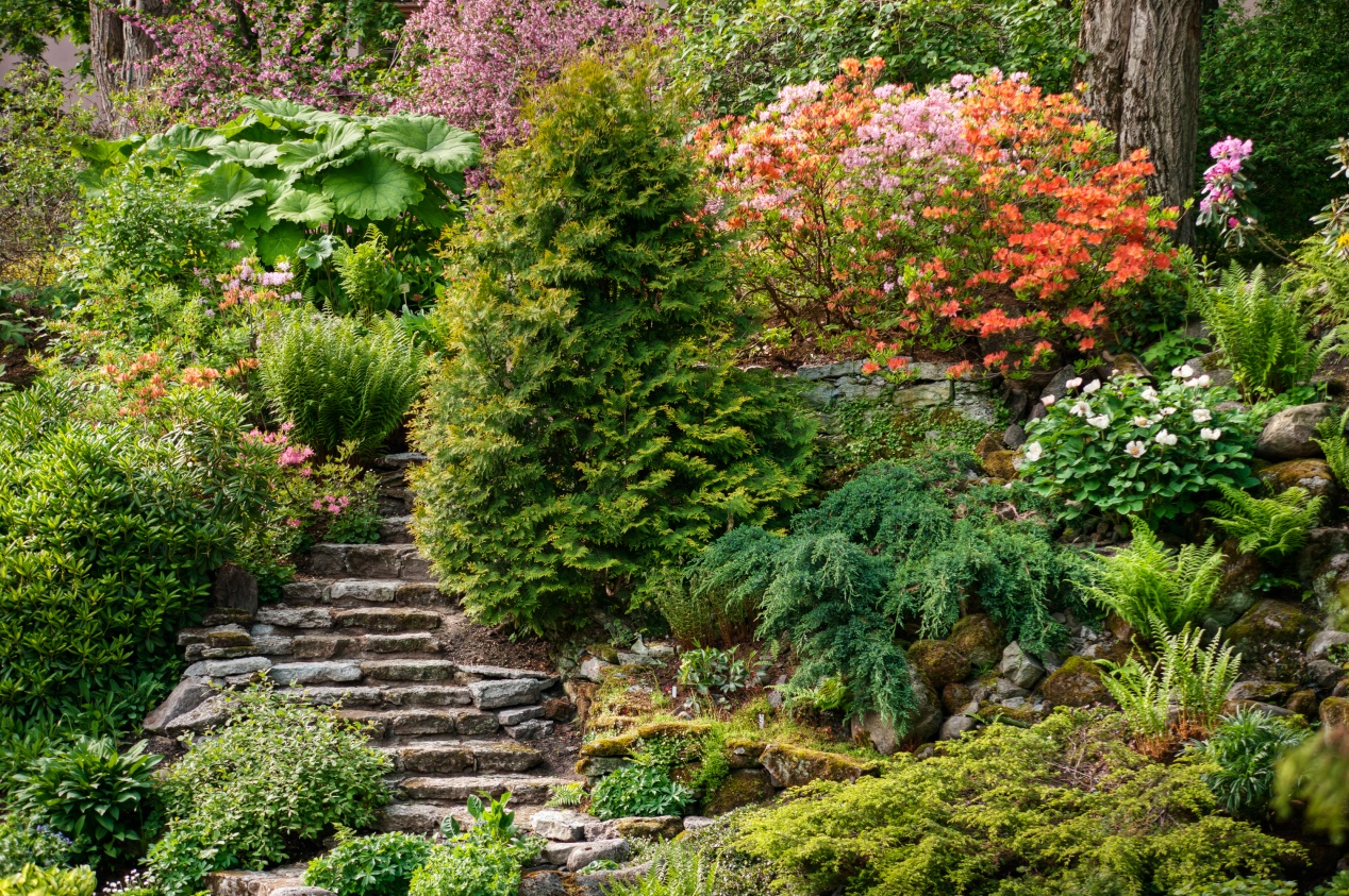 Un jardin en pente agencer et aménager un jardin en pente