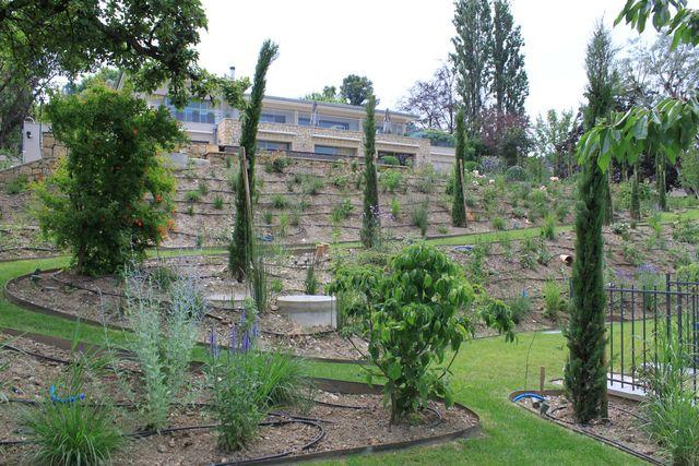 Un jardin légèrement en pente