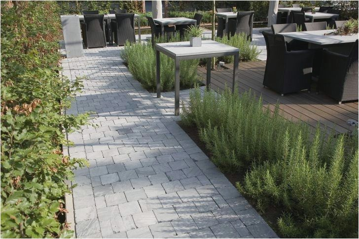 ment Amenager son Jardin Allee Naturel Amenagement D