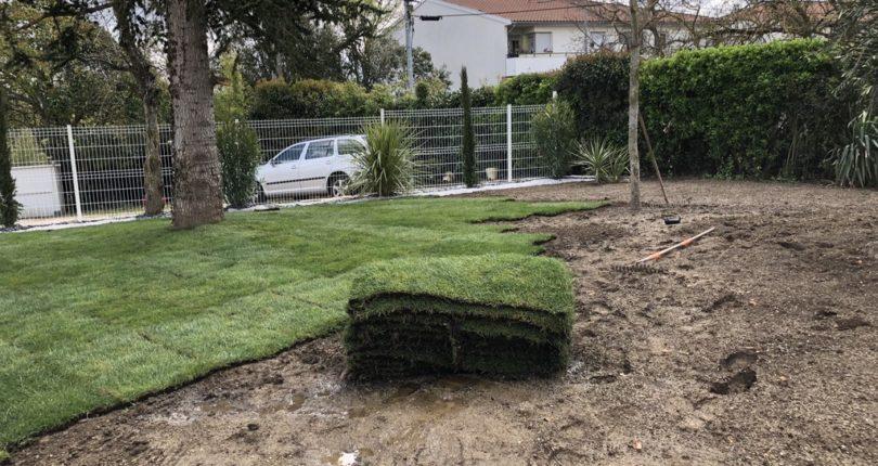 Espace vert pelouse naturelle terrain vert aménagement