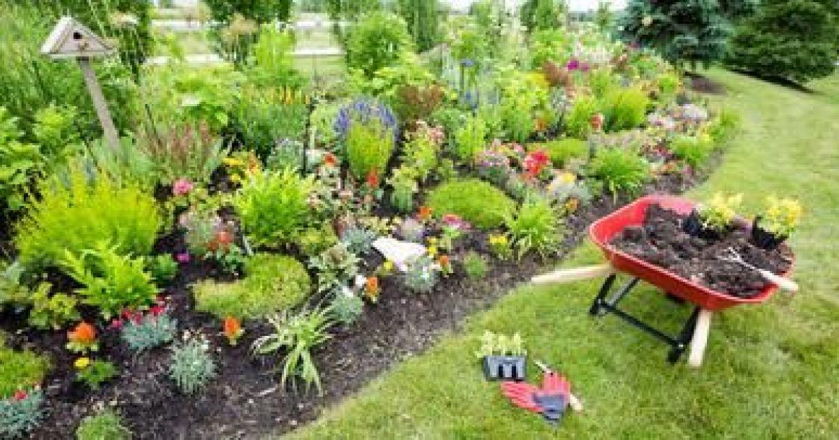Aménagement de jardin potager fleurs arbres pelouses