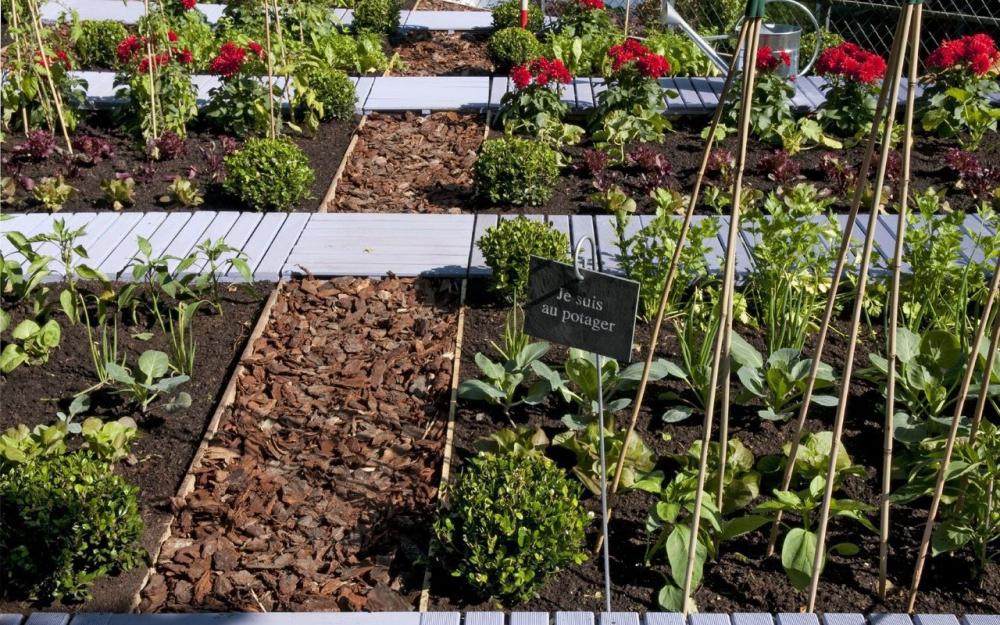 Amenagement Jardin Potager Des Idées