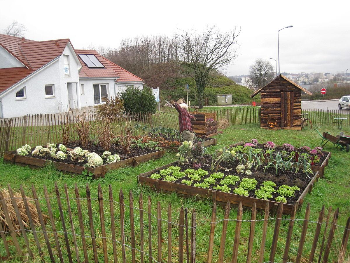 Jardin potager — Wikipédia