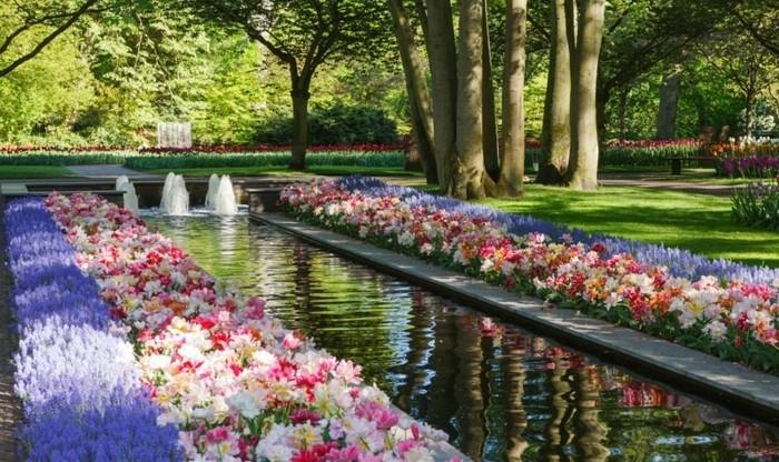 1001 conseils et modèles pour créer une parterre de fleurs