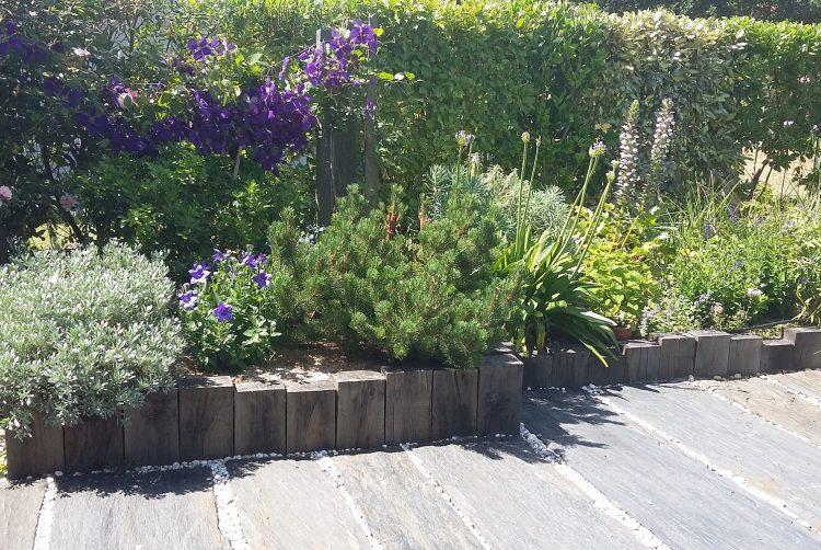 Aménagement et entretien de parcs et jardins