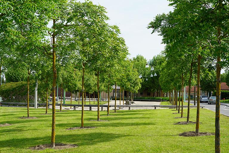 Aménagement paysager Orléans