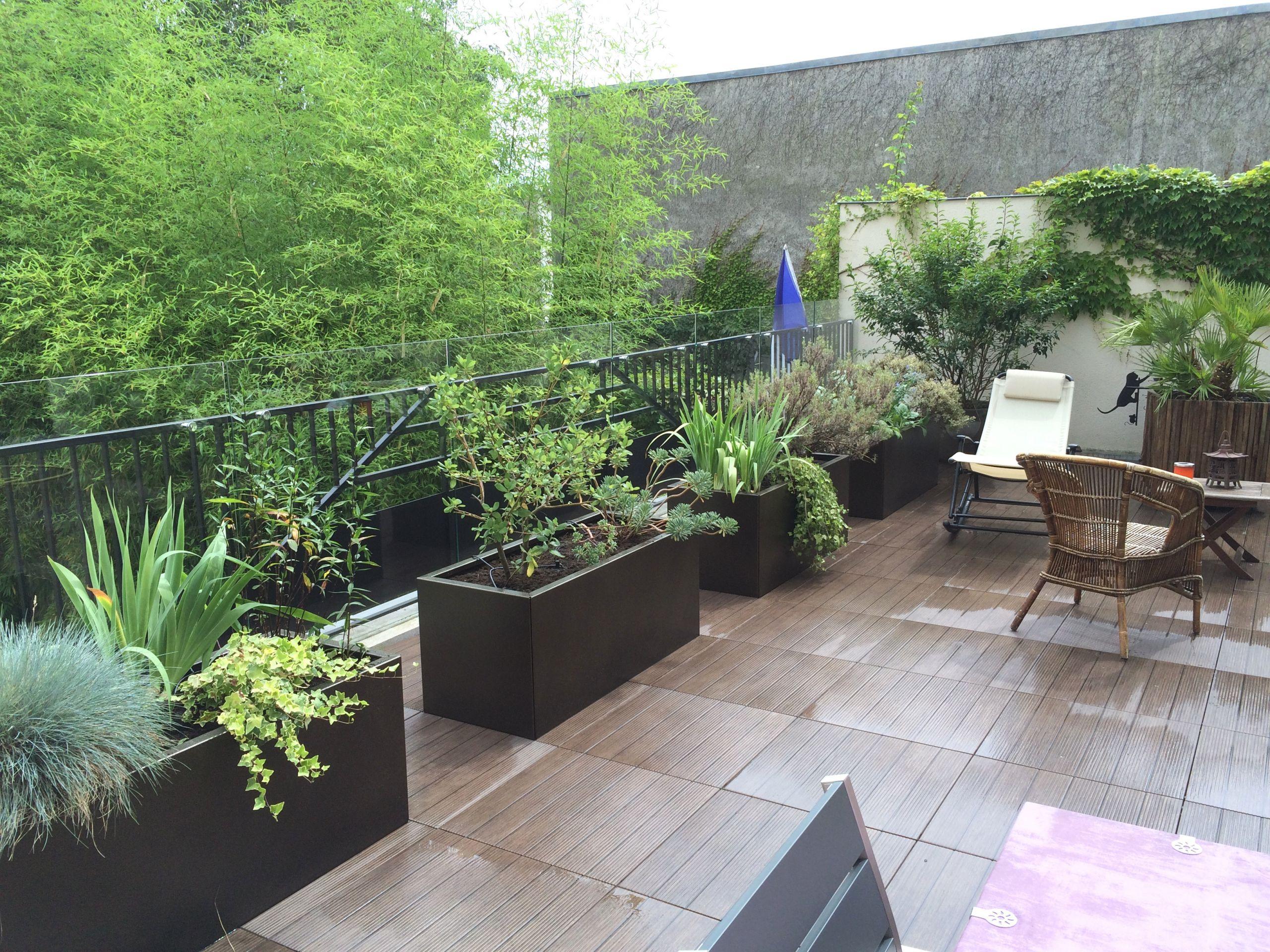 Amenager Petit Jardin Myfrdesign Co Avec Petit Jardin A