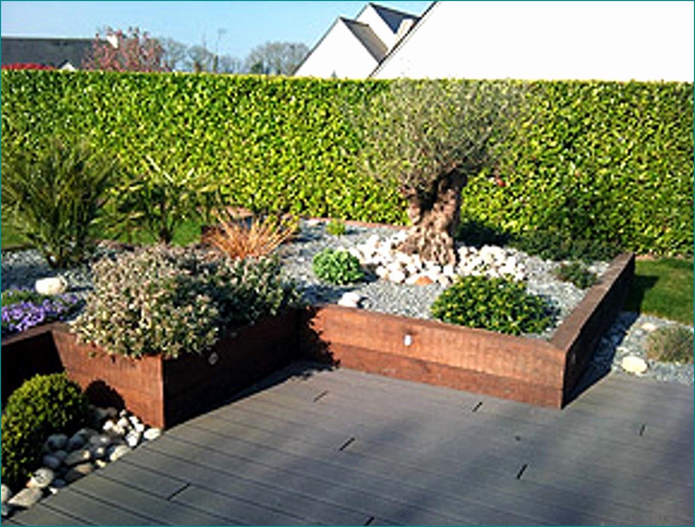 Amenager Jardin Rectangulaire Ment Amenager Un Petit Jardin Rectangulaire Génial 56