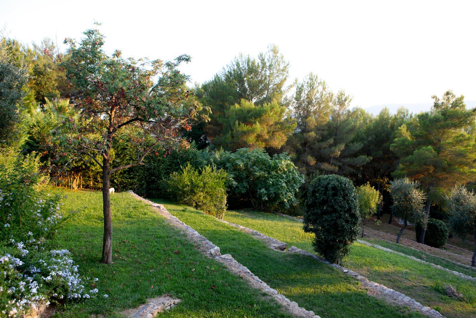 Jardin en pente ment planter