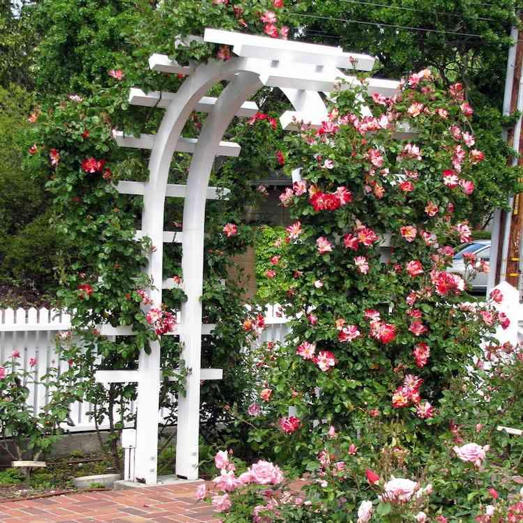 6 styles d' arche de jardin pour booster la décoration