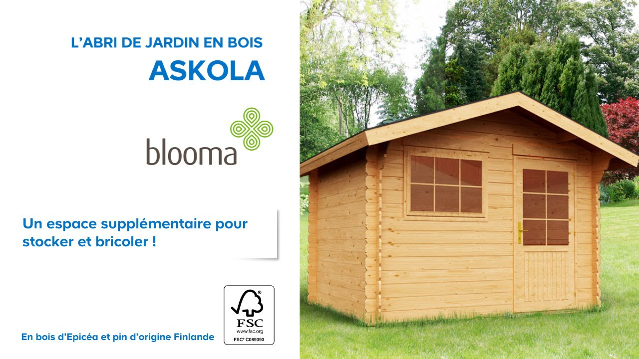 Abri de jardin en bois Askola BLOOMA Castorama