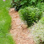Canapé De Jardin Bois Bordure De Fleurs Vivaces Jardin Avec Copeau De Bois Du