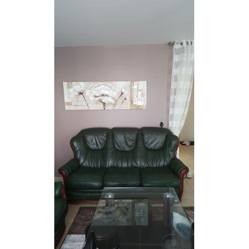 Canapé Non Convertible En Cuir Couleur Vert 3 Places