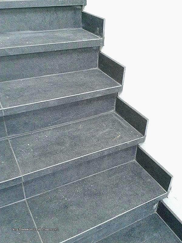 Carrelage Escalier Exterieur Carrelage Escalier Exterieur Antiderapant Unique Nez De Idees Conception Jardin Idees Conception Jardin