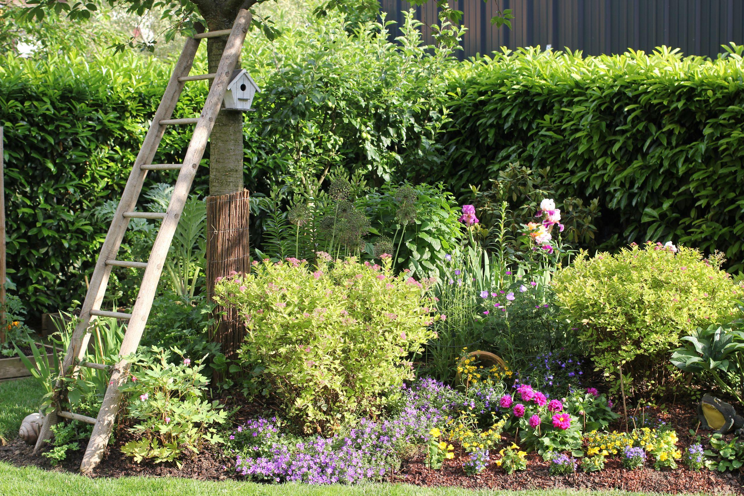 Aménager son jardin bud et conseils