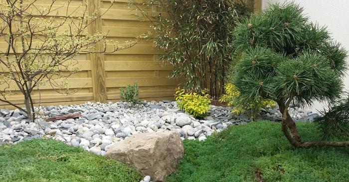 petit jardin sans entretien panneaux bois dans petit