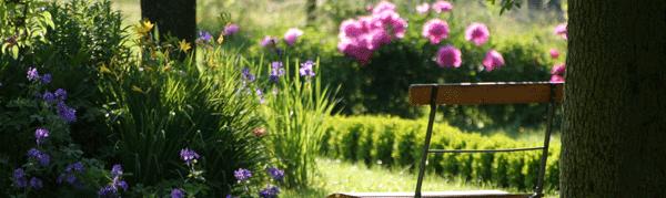 Comment Aménager Un Petit Jardin Des Idées