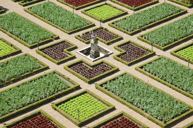 Château et jardins de Villandry Le Potager d ornement