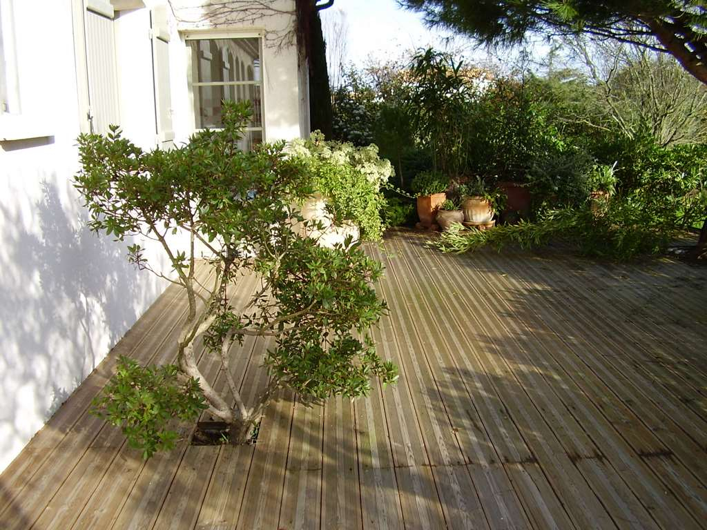 Conception jardin Royan au 06 23 95 49 87 Rottier