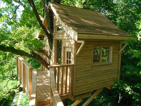 Construire Une Cabane De Jardin Concept