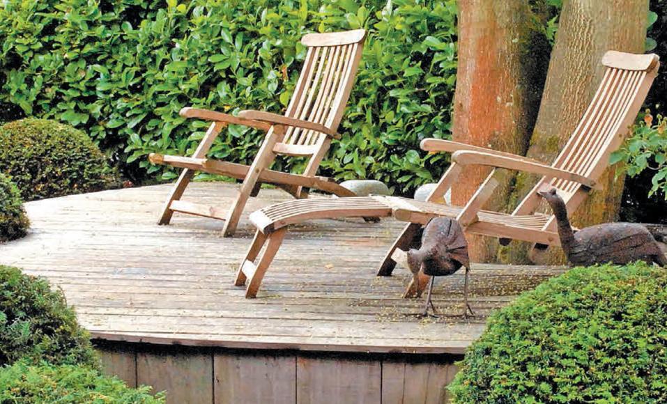 Construire une terrasse en bois avec un arbre au milieu