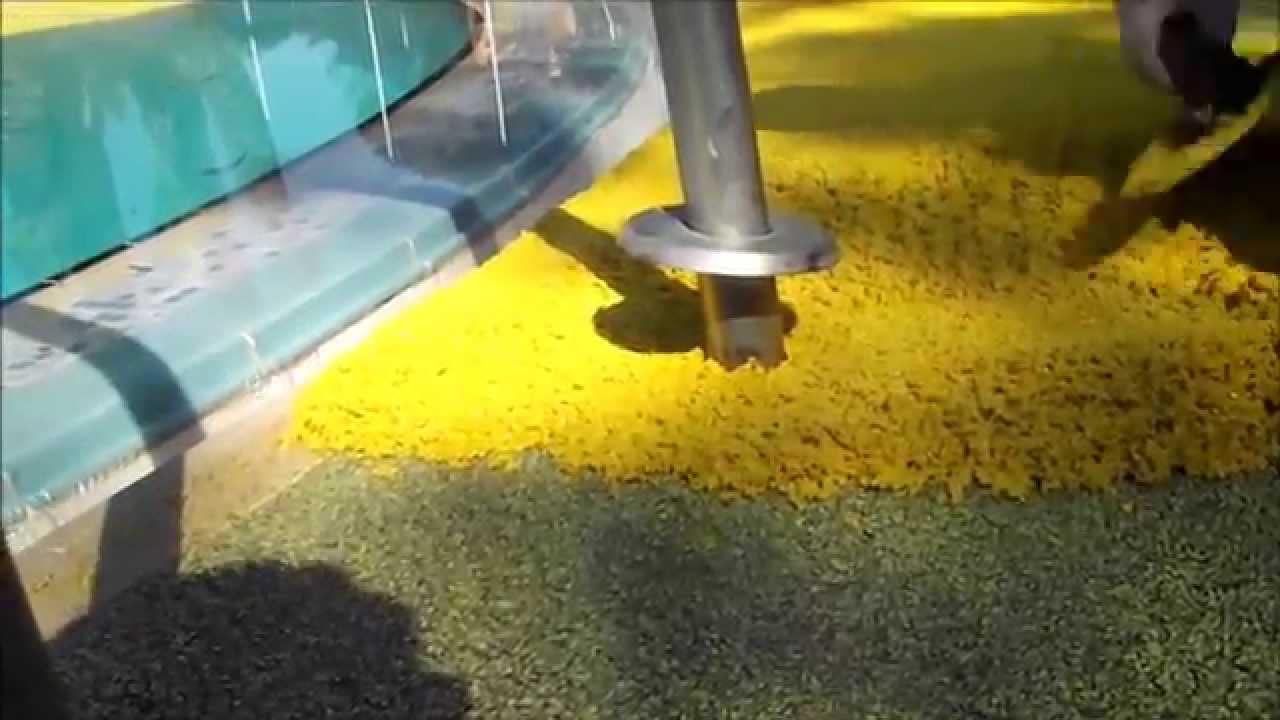 Pose d un sol coulé en contour de piscine