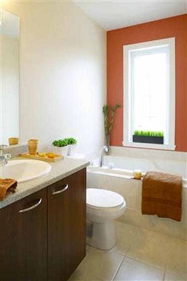 salle de bain peinture rouge terre sur mur baignoire