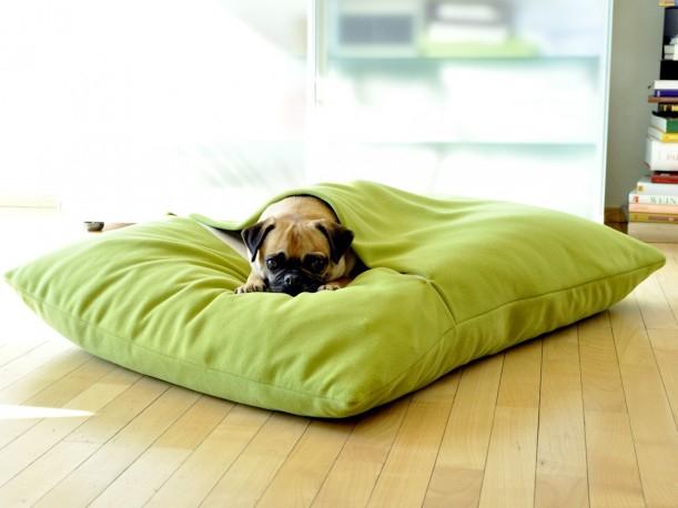 Coussin lit pour chien DIVAN DUE