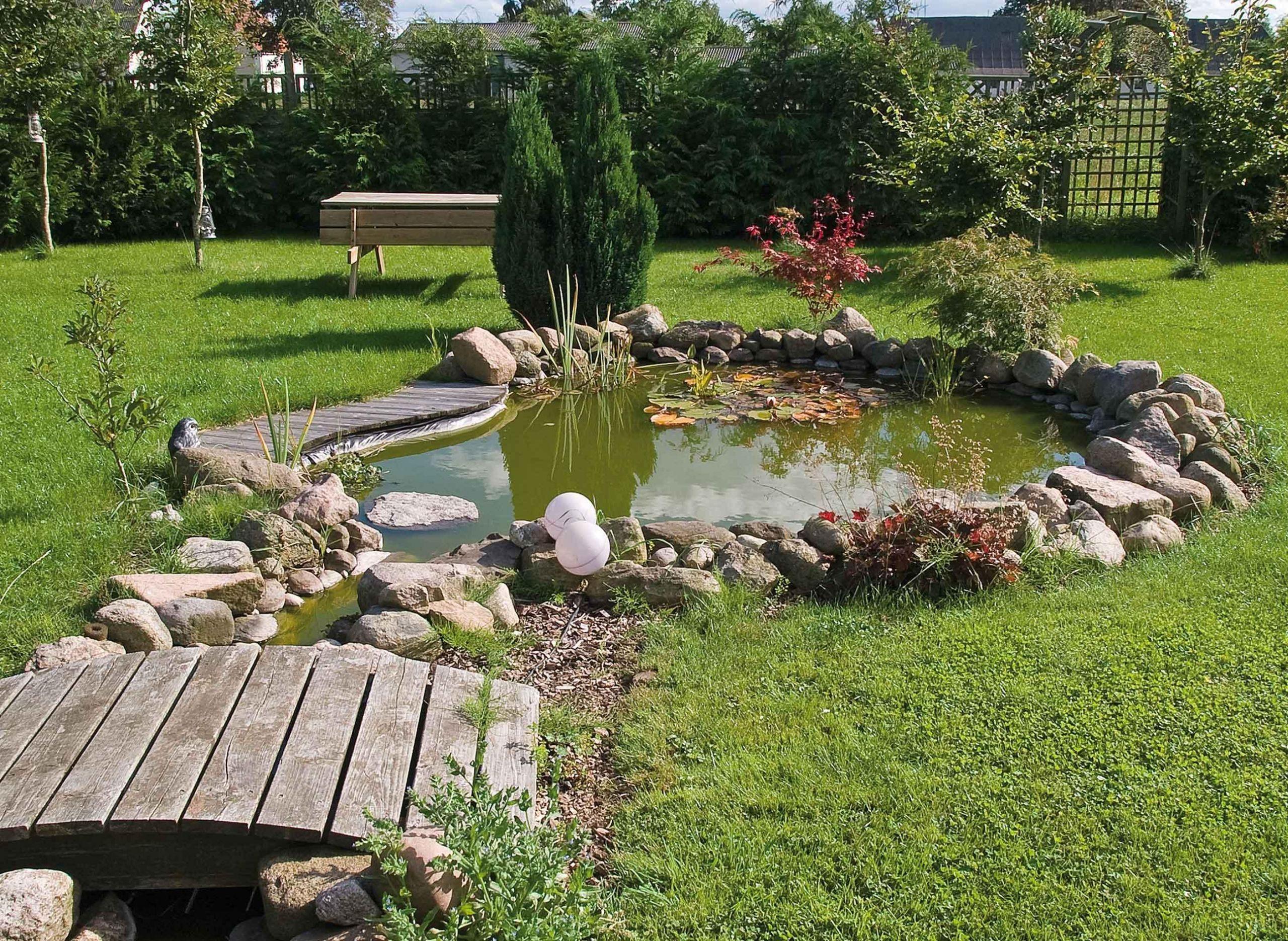 Aménagement bassin extérieur Lille Création étang jardin