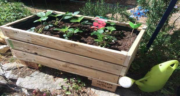 DIY déco Faire une jardinière en palette bois