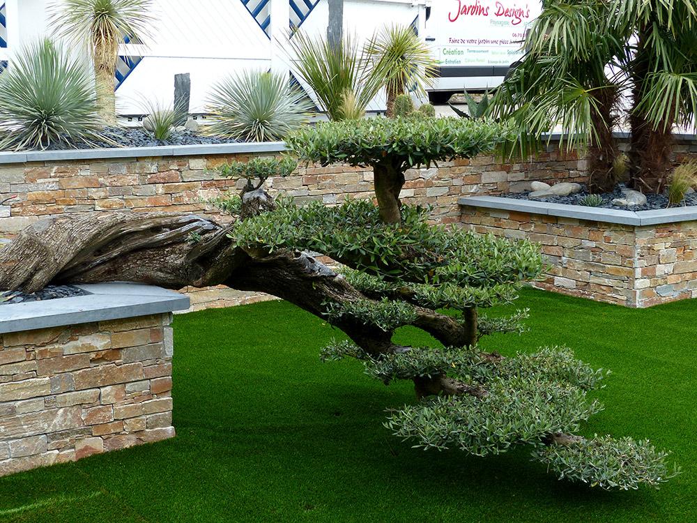 Jardins Design's Paysagiste en Charente Maritime