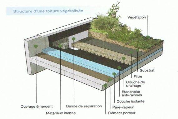 Coupe étanchéité toiture végétalisée Jardin