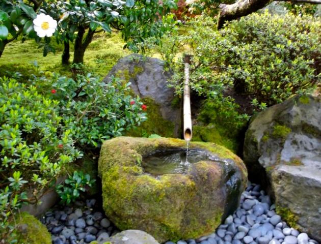 bassin d eau jardin japonais