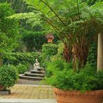 Idée Jardin Zen 15 Idées Pour Un Jardin Zen Une Pergola tout