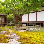 Idée Jardin Zen 60 Fotos E Imágenes De Gran Calidad De Jardin Zen Getty
