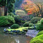 Idée Jardin Zen Aménagement D Un Jardin Japonais 101 Idées De Jardin Zen