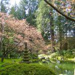 Idée Jardin Zen Le Jardin Zen Japonais En 50 Images Archzine