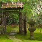 Idée Jardin Zen Une atmosphère Naturelle Dans L Arrière Cour Avec Le