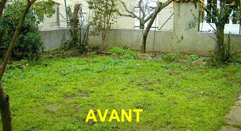 Amenagement Petit Jardin 40m2 Idee De Exterieur The