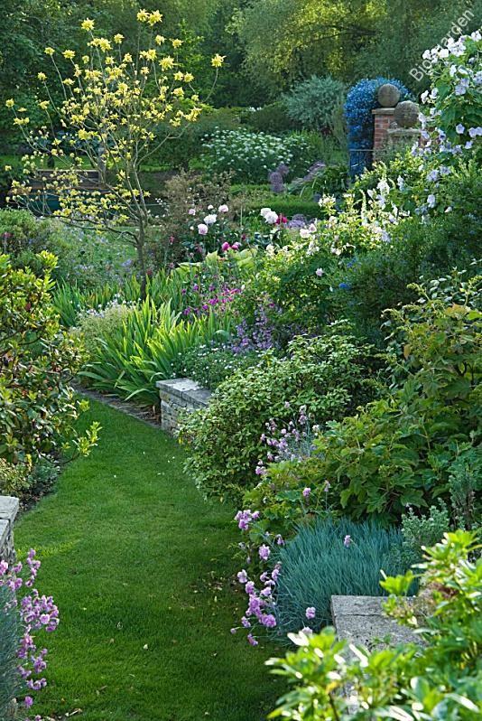 Jardin en pente Bios Carol Drake GAP