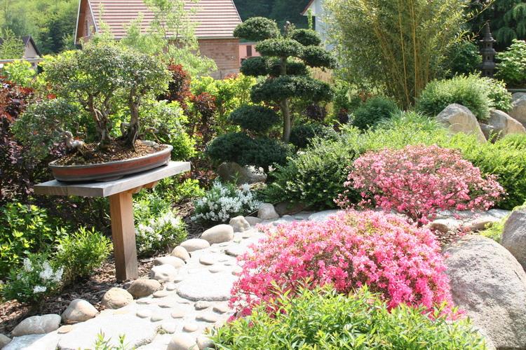Jardin Japonais Alsace Concept