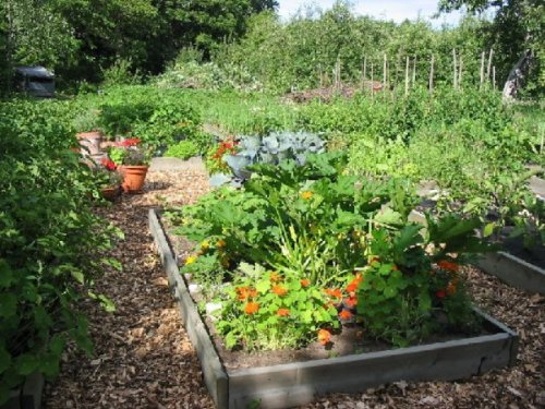 Jardin Paysager Exemple Conception