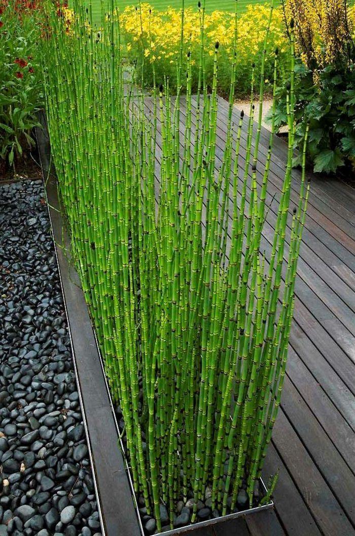 Jardin Paysager Moderne Le Jardin Paysager Tendance Moderne De Jardinage