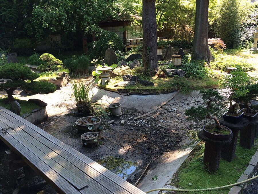 Jardin japonais à Nogent sur Marne