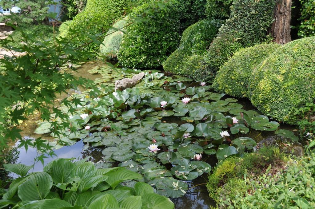Jardin Zen Drome Un Jardin Zen Dans La Drôme Jardiner Avec Jean Paul
