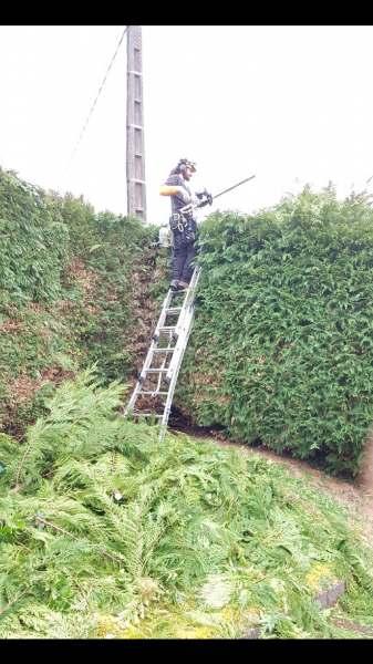 Jardinier Pas Cher Des Idées