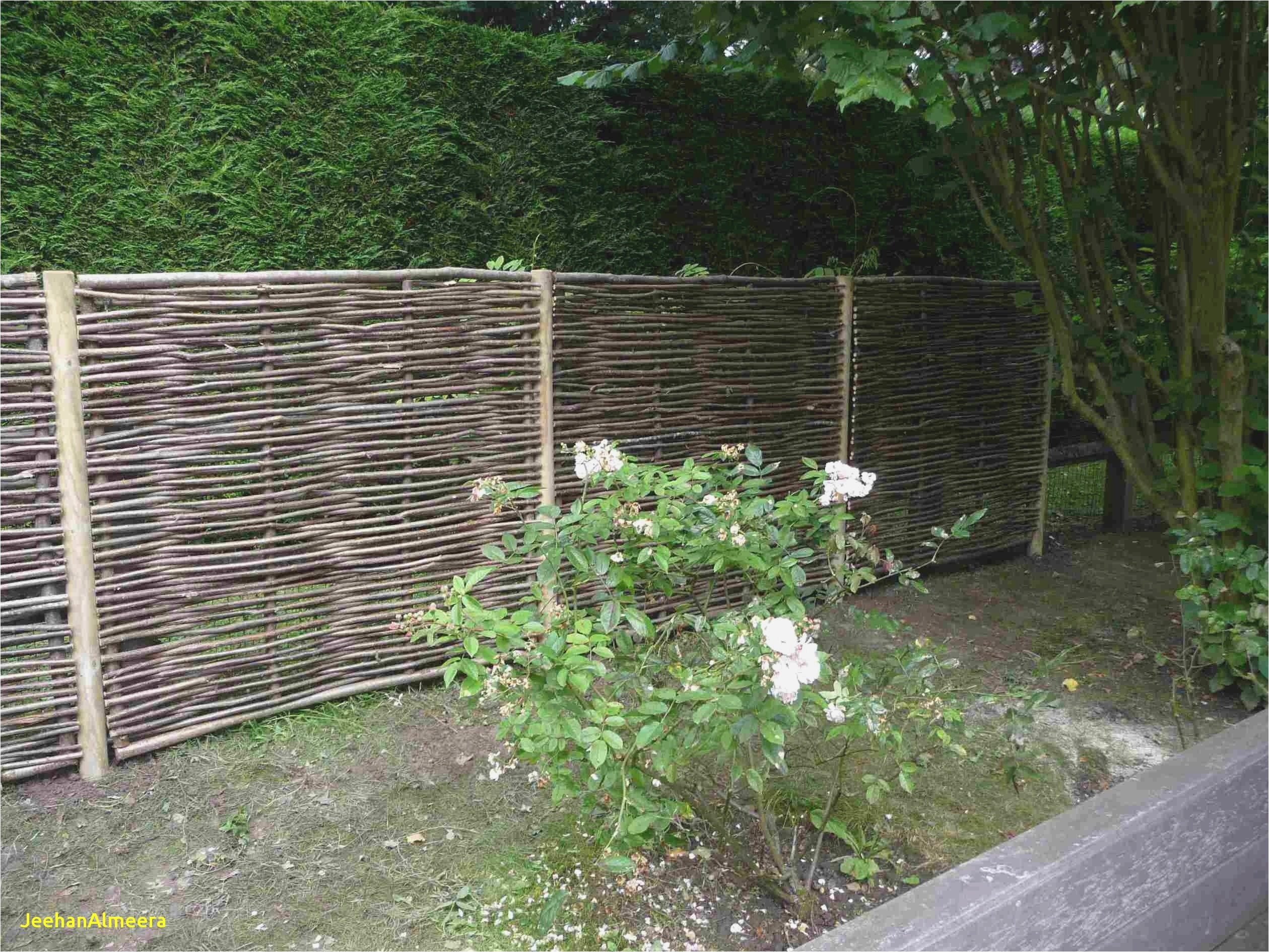 Logiciel creation jardin sch me idees conception jardin - Paysager son jardin logiciel gratuit ...